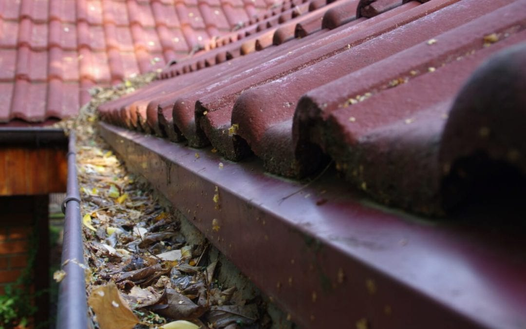 fall home maintenance includes cleaning the gutters